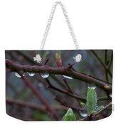 April Showers Weekender Tote Bag