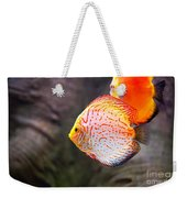Aquarium Orange Spotted Fish Weekender Tote Bag