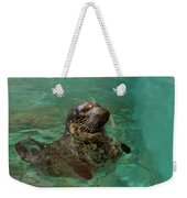 Aquarium Seal  Weekender Tote Bag