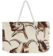 Aquatic Animals - Conch - Shells - Snails Weekender Tote Bag