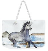 Arabian Horse And Snow - Da Weekender Tote Bag