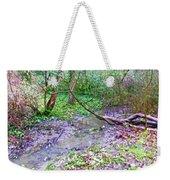 Arboretum Creek Painted Weekender Tote Bag