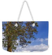 Arbutus Tree At Rathtrevor Beach British Columbia Weekender Tote Bag