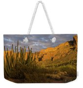 Arch Canyon 3 Weekender Tote Bag
