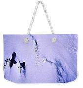 Arctic Fastness  Weekender Tote Bag