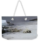 Arctic Fox Eating Weekender Tote Bag