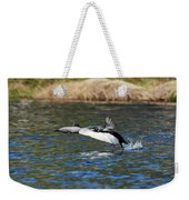 Arctic Loon Take Off Weekender Tote Bag