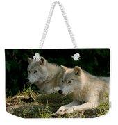 Arctic Wolf Pictures 1268 Weekender Tote Bag