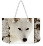 Arctic Wolf Seen Between Two Trees In Winter Weekender Tote Bag