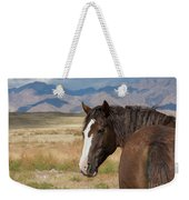 Are You Coming? Weekender Tote Bag by Nicole Markmann Nelson