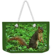 Are You Taking My Picture Again ? Weekender Tote Bag