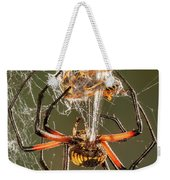 Argiope Spider Wrapping A Hornet Weekender Tote Bag