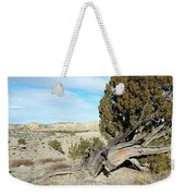 Arid Beauty Weekender Tote Bag