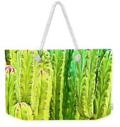 Arizona Cactus #16 Weekender Tote Bag