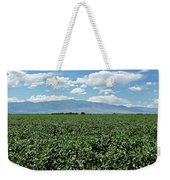 Arizona Cotton Field Weekender Tote Bag