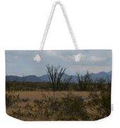 Arizona Rest Stop Weekender Tote Bag
