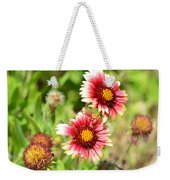 Arizona Sun Blanket Flowers Weekender Tote Bag