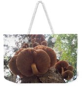 Armillaria Autumn On A Tree Trunk Weekender Tote Bag