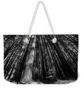 Armstrong National Park Redwoods Filtered Sun Black And White Weekender Tote Bag