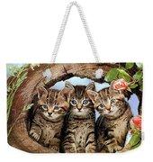 Three Cats Weekender Tote Bag