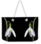 Solo Perfection Weekender Tote Bag