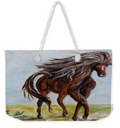 Splashing The Light - A Young Horse Weekender Tote Bag