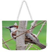 Perching Sparrow Weekender Tote Bag