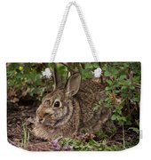 A Very Fine Bunny Resting Under The Lilac Bush Weekender Tote Bag