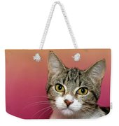 Life Is Better With A Cat Weekender Tote Bag