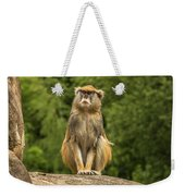 Meditating Monkey Weekender Tote Bag