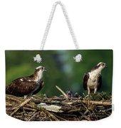 Osprey Family Night Weekender Tote Bag