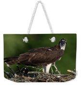 Osprey Portrait Weekender Tote Bag