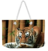 Asian Tiger 5 Weekender Tote Bag