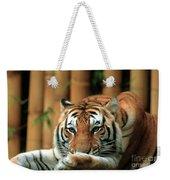 Asian Tiger 5 Weekender Tote Bag