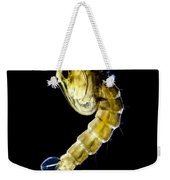 Asian Tiger Mosquito Pupa Weekender Tote Bag