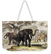 Asiatic Elephant With Young, 19th Weekender Tote Bag