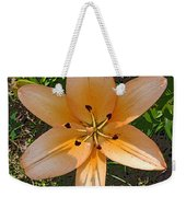 Asiatic Lily With Poster Edges Weekender Tote Bag