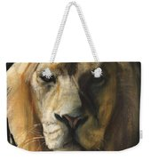 Asiatic Lion Weekender Tote Bag