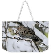 Asleep In The Snow - Mourning Dove Portrait Weekender Tote Bag