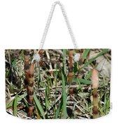 Asparagus In The Wild Weekender Tote Bag