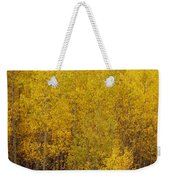 Aspen Fall 2 Weekender Tote Bag