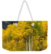Aspen Fall 3 Weekender Tote Bag