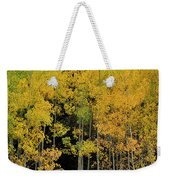 Aspen Haven  Weekender Tote Bag by Ron Cline