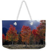 Aspen Light Weekender Tote Bag