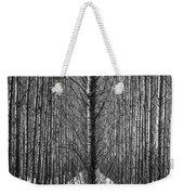 Aspen Rows Weekender Tote Bag