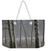 Aspen Stand In A Snowstorm Weekender Tote Bag