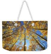 Aspen Tree Canopy 2 Weekender Tote Bag