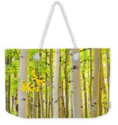 Aspen Tree Forest Autumn Time Portrait Weekender Tote Bag