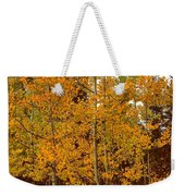 Aspen Trees With Autumn Leaves  Weekender Tote Bag