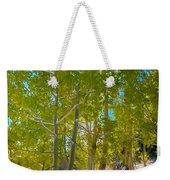 Aspens At Pine Creek Basin Weekender Tote Bag
